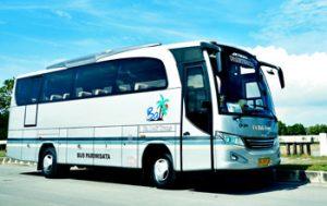 bus-bali-28seats